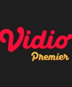 Vidio Premier Gold 1 tahun shared akun